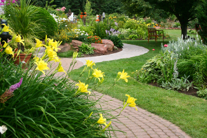 Landscaping Company in Bristol