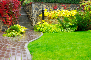 Landscaping Company in Caledonia