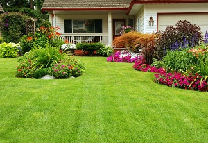 salem-lawn-maintenance